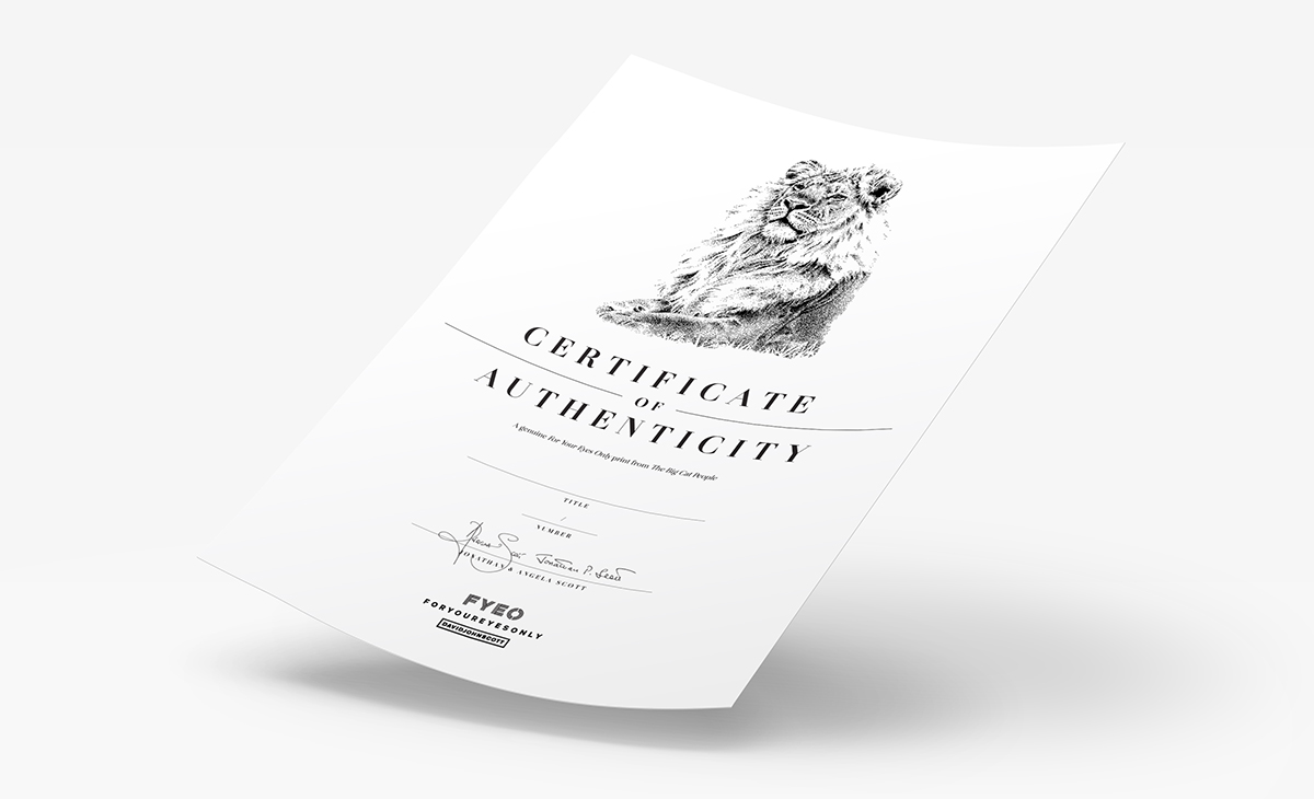 Print Certificate of Authenticity